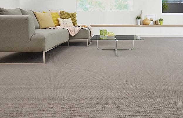 Como limpar carpete