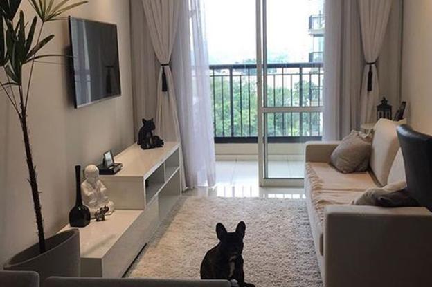 apartamentos studio como usar tapete em sala pequena